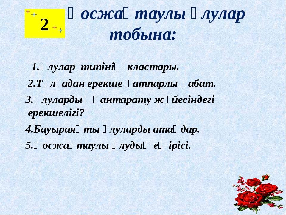 Қосжақтаулы ұлулар тобына: 1.Ұлулар типінің кластары. 2.Тұлғадан ерекше қатп...