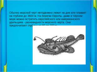 Обычно морской черт неподвижно лежит на дне или плавает на глубине до 3600 м