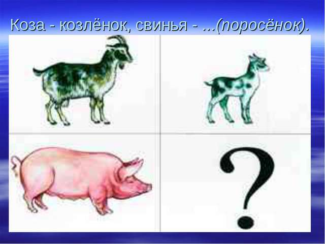 Коза - козлёнок, свинья - ...(поросёнок).