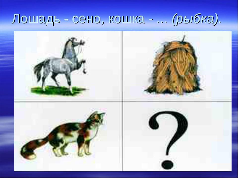Лошадь - сено, кошка - ... (рыбка).