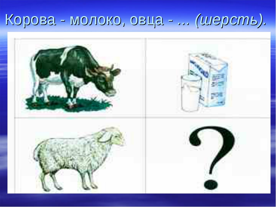 Корова - молоко, овца - ... (шерсть).
