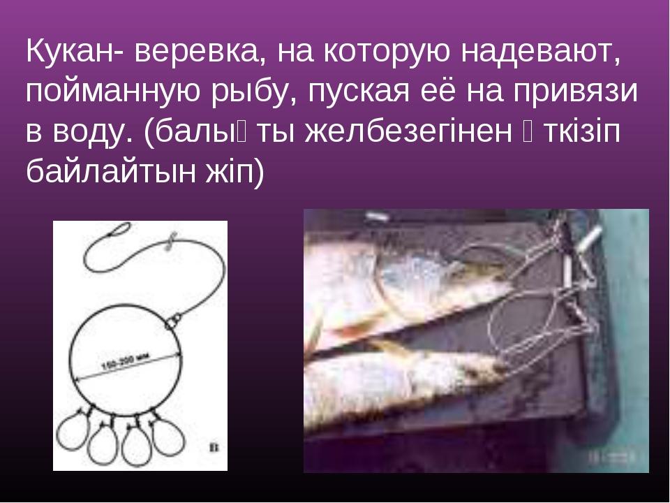 Кукан- веревка, на которую надевают, пойманную рыбу, пуская её на привязи в в...