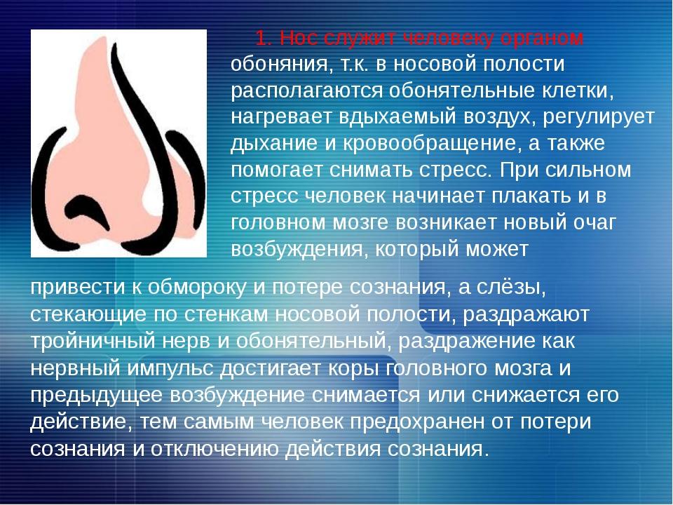 1. Нос служит человеку органом обоняния, т.к. в носовой полости располагаютс...