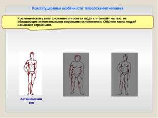 Нормостенический тип Нормостенический тип (атлетический) тип характеризуется