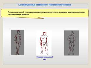 Мышцы туловища 1 - прямая мышца— сгибает туловище, подтягивает ноги к груди,