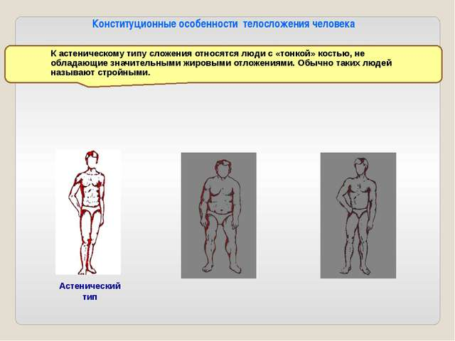 Нормостенический тип Нормостенический тип (атлетический) тип характеризуется...