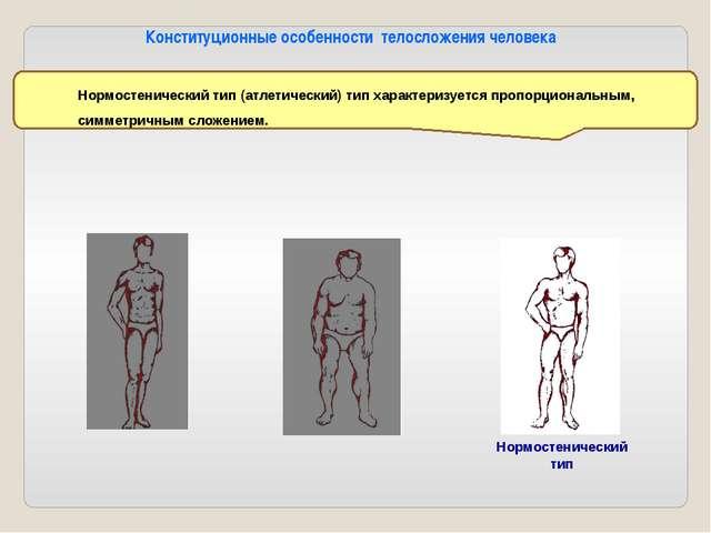 Мышцы туловища 8 - трапециевидная мышца— поднимает, вращает, сближает лопатки...