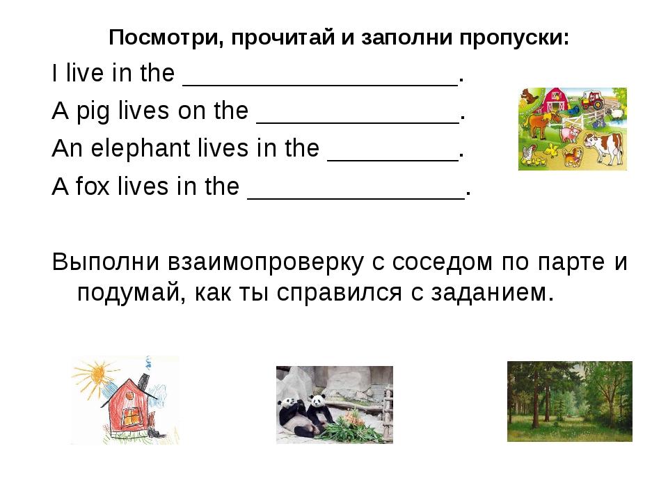 Посмотри, прочитай и заполни пропуски: I live in the ___________________. A p...