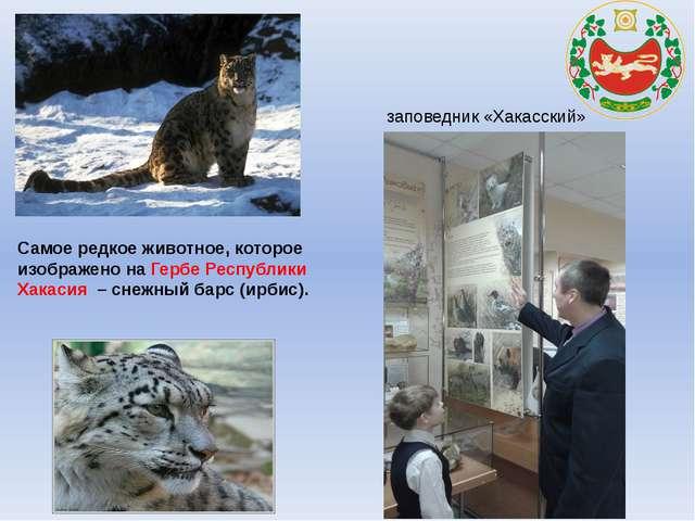Самое редкое животное, которое изображено на Гербе Республики Хакасия – снеж...