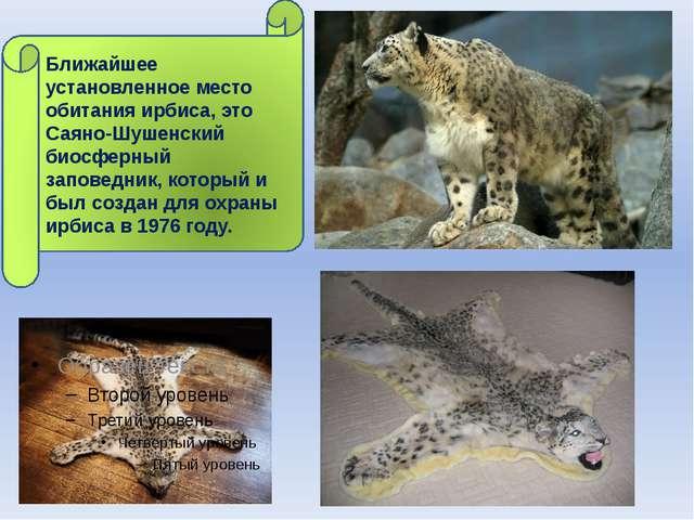 Ближайшее установленное место обитания ирбиса, это Саяно-Шушенский биосферны...