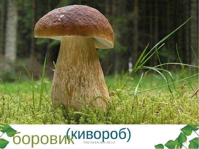 Этот гриб живет под елью, Под ее огромной тенью. Мудрый бородач-старик, Жител...