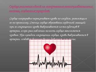 Сердце непрерывно перекачивает кровь по сосудам, разносящим ее по организму.