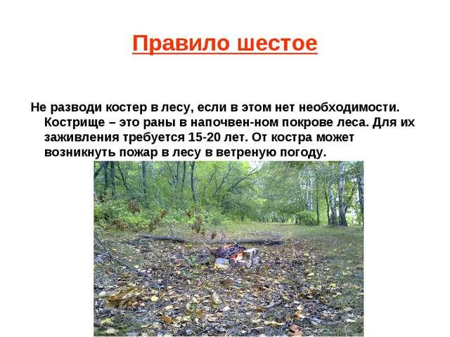 Правило шестое Не разводи костер в лесу, если в этом нет необходимости. Костр...
