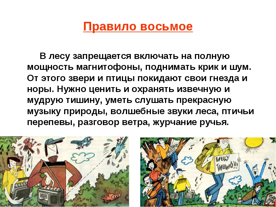 Правило восьмое В лесу запрещается включать на полную мощность магнитофоны, п...