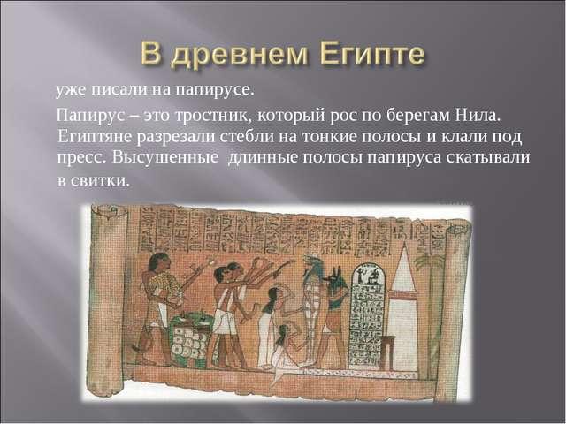 уже писали на папирусе. Папирус – это тростник, который рос по берегам Нила....