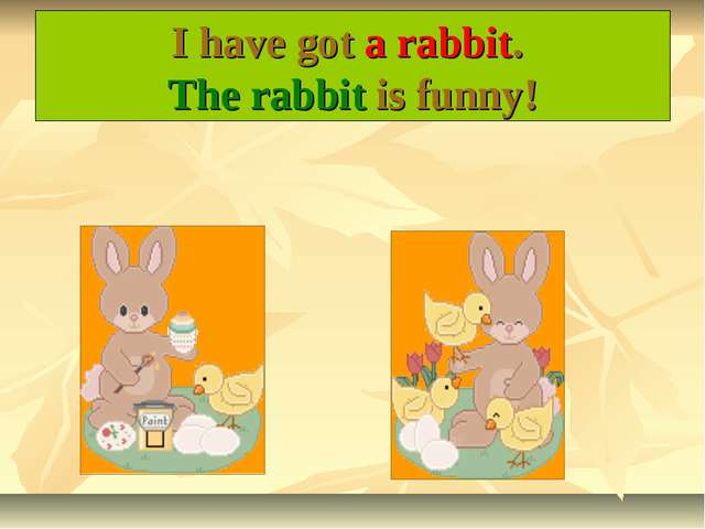 I have got a rabbit. The rabbit is funny!