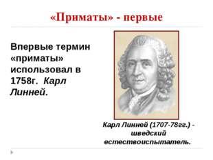 «Приматы» - первые Впервые термин «приматы» использовал в 1758г. Карл Линней.