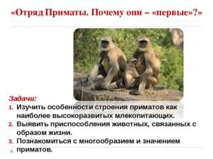«Отряд Приматы. Почему они – «первые»?» Задачи: Изучить особенности строения