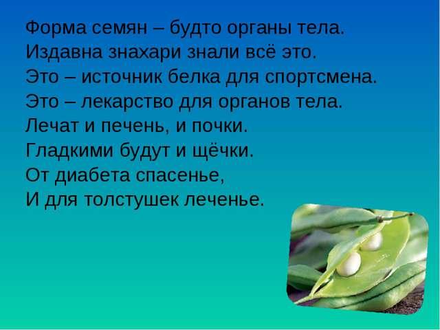 Форма семян – будто органы тела. Издавна знахари знали всё это. Это – источни...