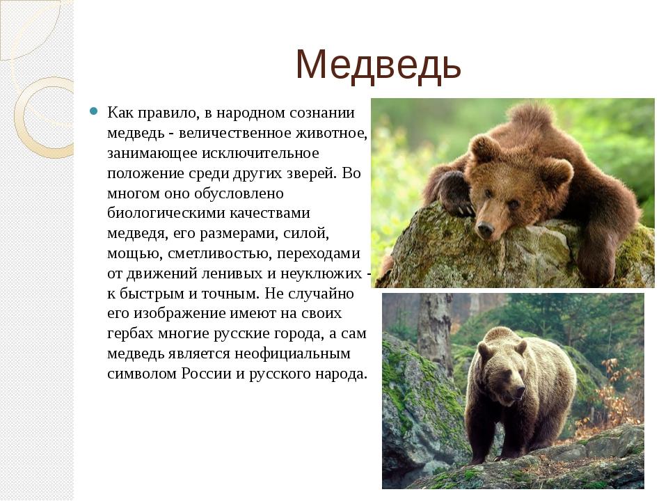 Медведь Как правило, в народном сознании медведь - величественное животное, з...