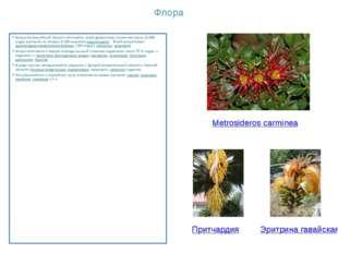 Флора Флора Австралийской области отличается своей древностью и включает окол