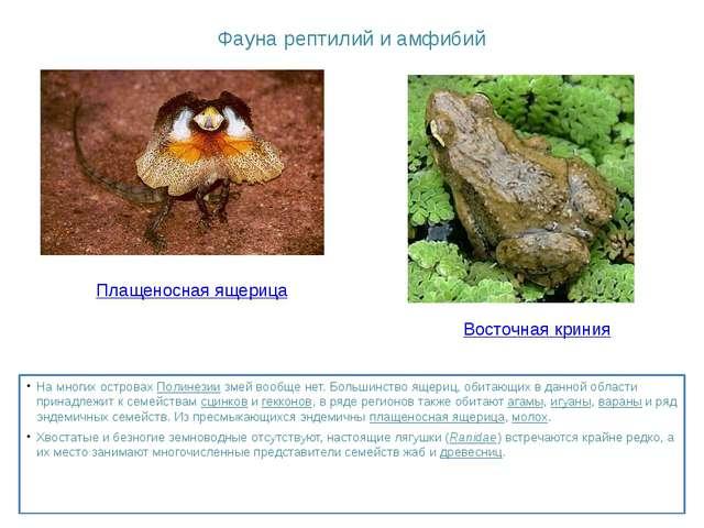 Фаунарептилийиамфибий На многих островахПолинезиизмей вообще нет. Больши...