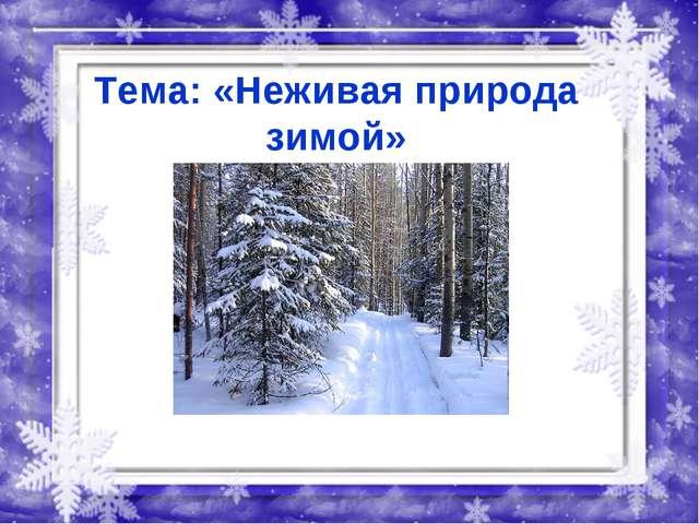 Тема: «Неживая природа зимой»