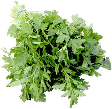 parsley 2