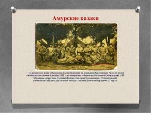 Амурские казаки – это военное сословие в Приамурье. Было образовано на основа