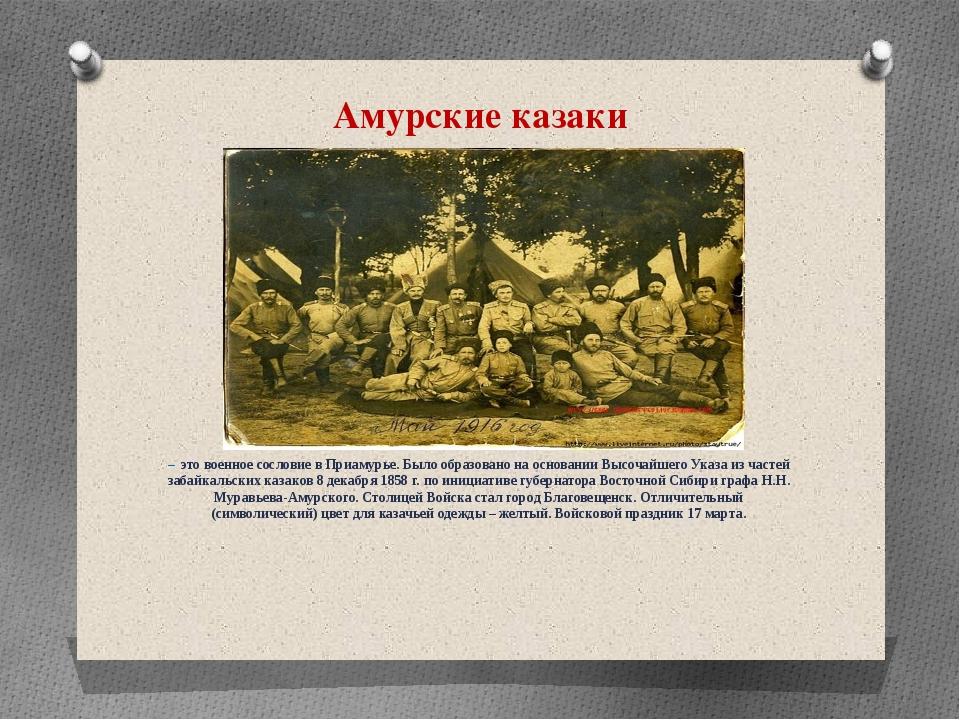Амурские казаки – это военное сословие в Приамурье. Было образовано на основа...