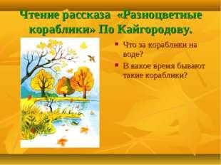 Чтение рассказа «Разноцветные кораблики» По Кайгородову. Что за кораблики на