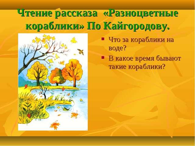 Чтение рассказа «Разноцветные кораблики» По Кайгородову. Что за кораблики на...