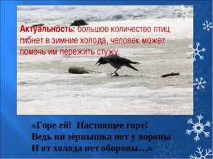 Актуальность:большое количество птиц гибнет в зимние холода, человек может п