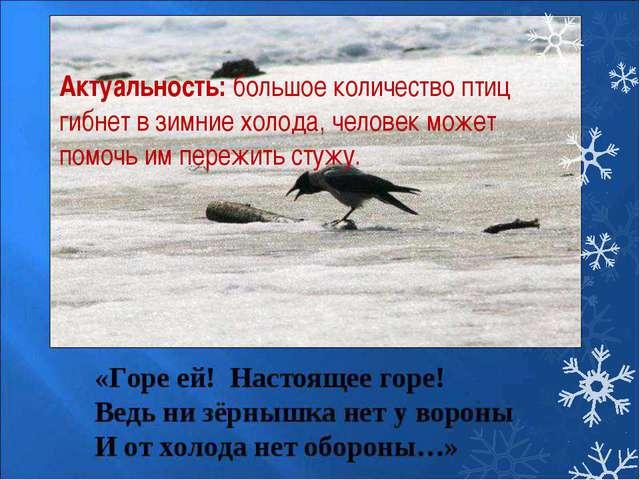 Актуальность:большое количество птиц гибнет в зимние холода, человек может п...