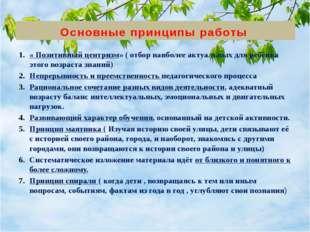 Основные принципы работы « Позитивный центризм» ( отбор наиболее актуальных д