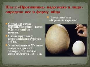 Справка: самое маленькое яйцо – весом 0.2г, у колибри – шмеля. Самое крупное