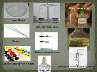 HCl Соляная кислота Известковая вода Чашка Петри Пинцет Акварельные краски и