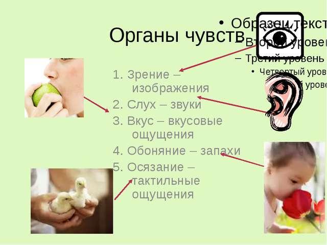 Органы чувств 1. Зрение – изображения 2. Слух – звуки 3. Вкус – вкусовые ощущ...