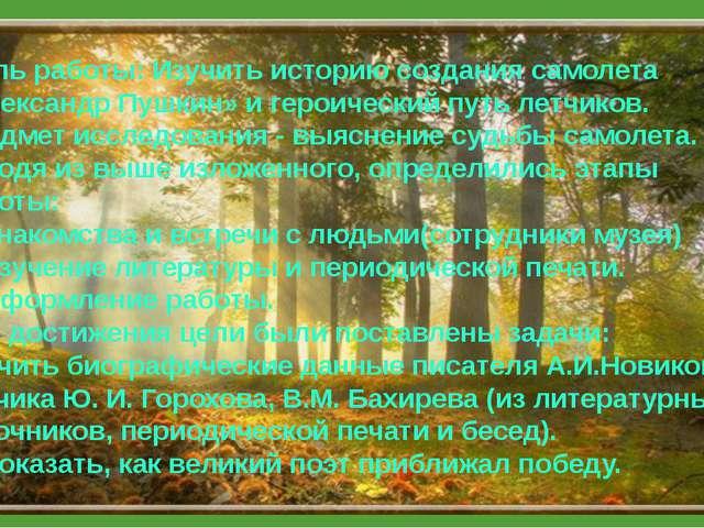 Цель работы: Восстановить историю создания самолета «Александр Пушкин» и гер...