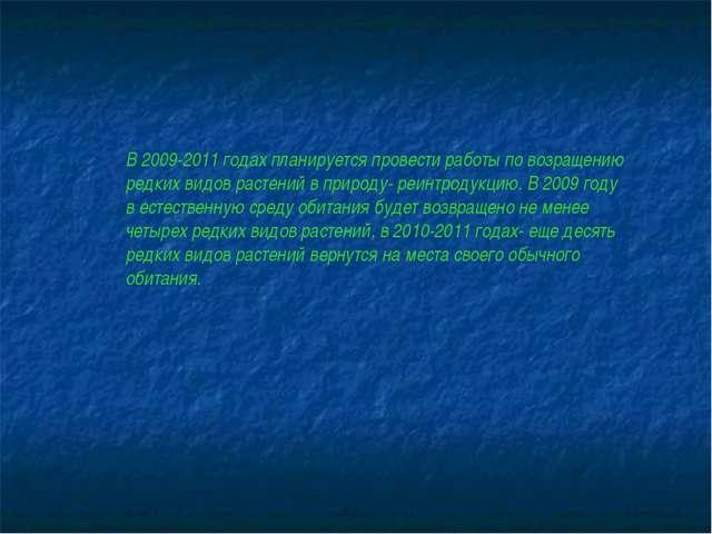 В 2009-2011 годах планируется провести работы по возращению редких видов раст...