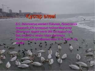 Құстар әлемі В.С. Залетаевтың мәліметі бойынша, Қазақстанда кездесетін 478 қ