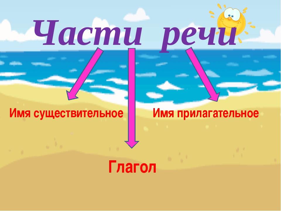 Части речи Имя существительное Имя прилагательное Глагол