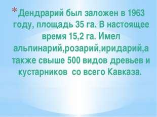 Дендрарий был заложен в 1963 году, площадь 35 га. В настоящее время 15,2 га.