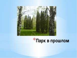 Парк в прошлом