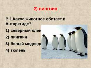 2) пингвин В 1.Какое животное обитает в Антарктиде? северный олень пингвин бе