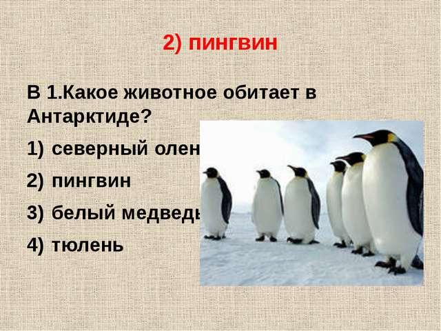 2) пингвин В 1.Какое животное обитает в Антарктиде? северный олень пингвин бе...