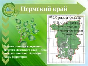 Пермский край Одно из главных природных богатств Пермского края— леса, которы