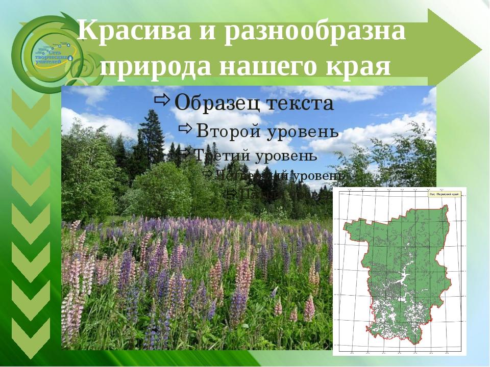 Красива и разнообразна природа нашего края