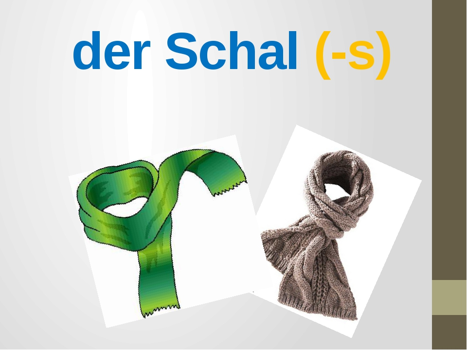 der Schal (-s)