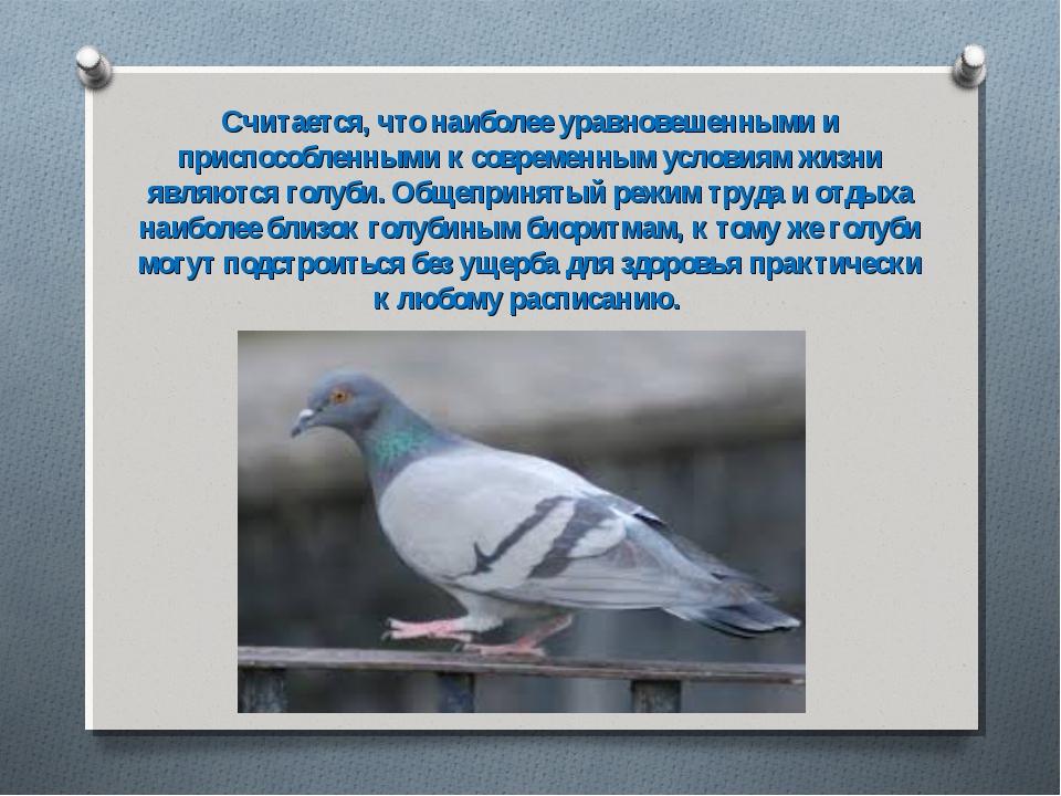 Считается, что наиболее уравновешенными и приспособленными к современным усло...